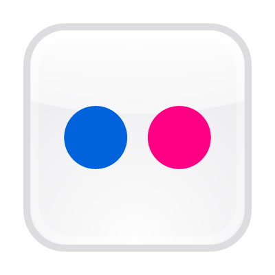 flickr button logo vector